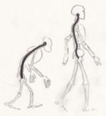 Wirbelsäule Mensch-Affe, Hinterhauptsloch